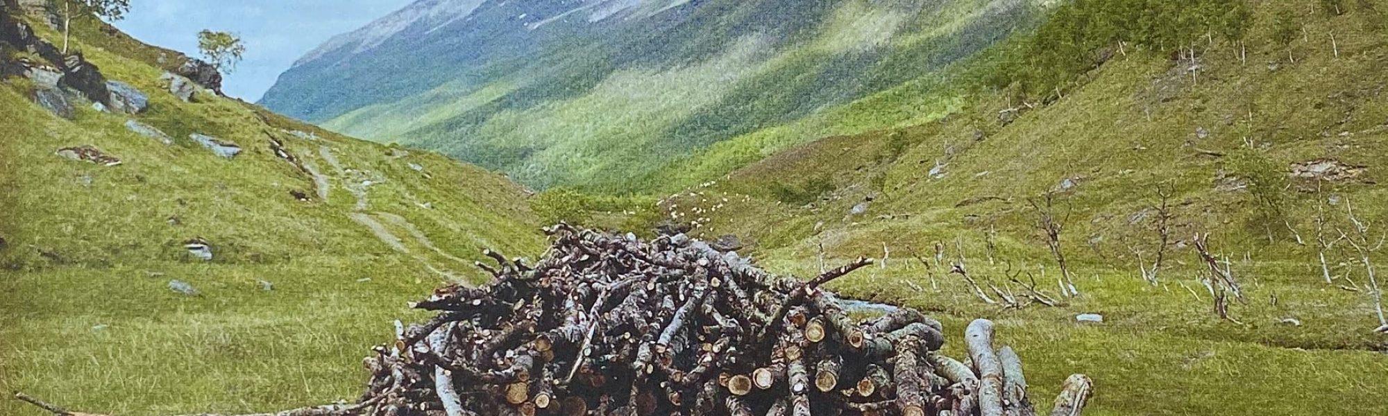 Wood Image 2009, Geir Tore Holm